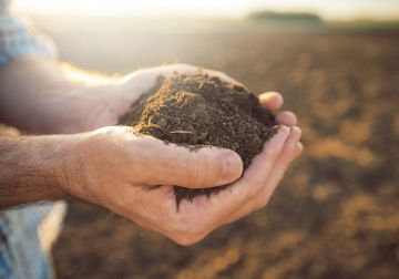 Soil Matters - Invest in your $oil